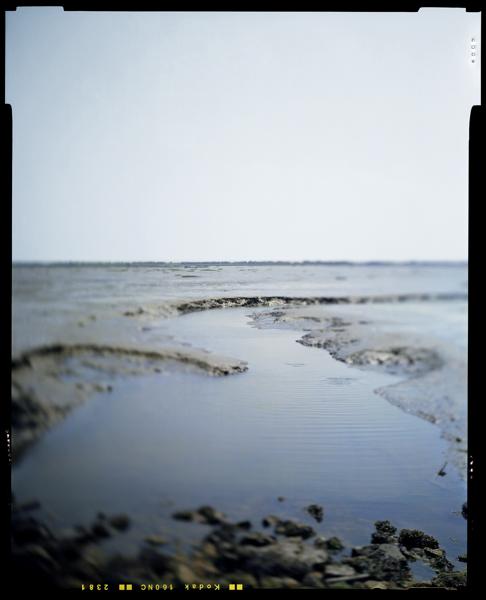 Littoral/Delta de la Leyre. Bassin d'Arcachon - Sabine Delcour