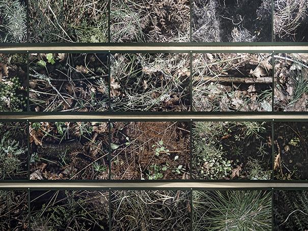 pierre-lin-renie-releves-et-plans-d-eau