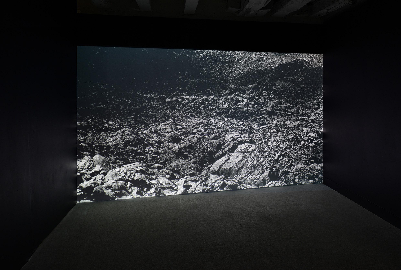 David Flaco, série Lapiaz, vue de l'exposition