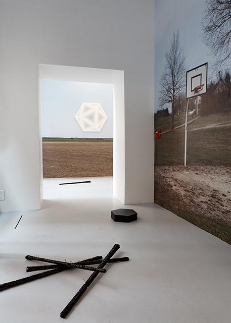 David Malek, La diagonale du vide, La salle de bains, Lyon, 2010