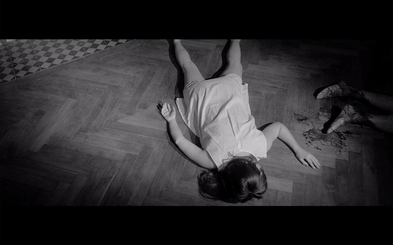 Camille Lavaud, Somnanbula (2017)