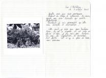 actualite de Aurélien Mauplot