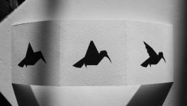 Origami du dossier dda Aquitaine de Aurélien Mauplot