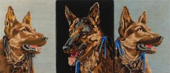 Disparition Dog / Proliferation Dog du dossier dda Aquitaine de Chantal Raguet