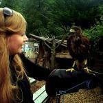 THE BIRDS ACT du dossier dda Aquitaine de Chantal Raguet