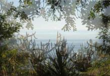 Le R�veur - 2015 du dossier dda Aquitaine de Ibai Hernandorena