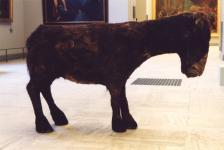 Mus�e des beaux-arts de Bordeaux - 2001 du dossier dda Aquitaine de Laurent Le Deunff