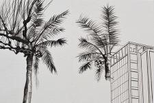 Nice Miami - 2014 du dossier dda Aquitaine de Muriel Rodolosse