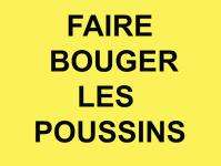 Faire bouger les poussins du dossier dda Aquitaine de Serge Provost